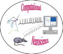 Computational neuroscience research papers